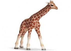 Schleich Giraffenbaby 14321