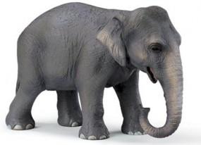 Schleich Asiatische Elefantenkuh 14344