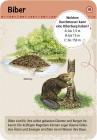 moses Verlag Expedition Natur - 50 Tierspuren 9724