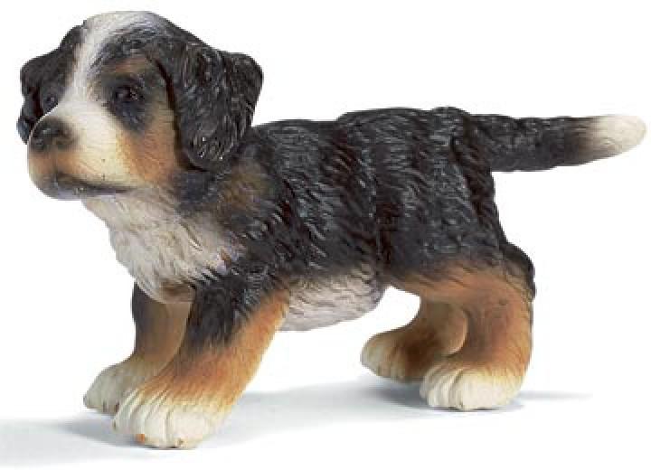 Schleich Berner Sennenhund Welpe 16344