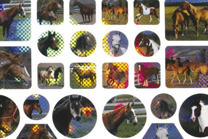 Kuenen Pferdesticker 80110